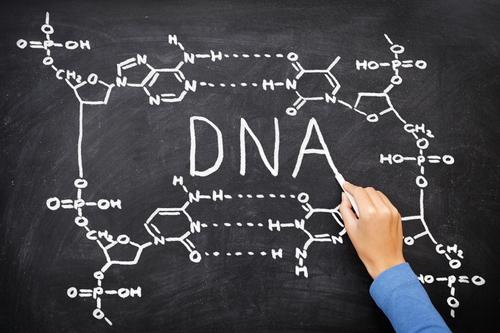 DNA blackboard drawing